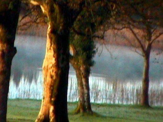 Condado de Galway, Irlanda: An Autumn walk through the grounds.