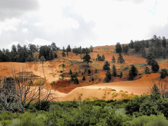 Coral Pink Sand Dunes State Park: La prima sabbia rosa