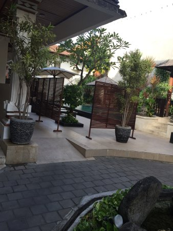 Bali Summer Hotel: photo3.jpg