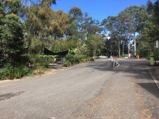North Ryde, Αυστραλία: photo1.jpg