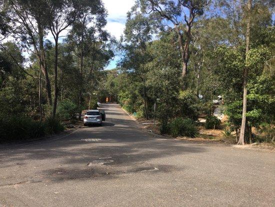 North Ryde, Αυστραλία: photo5.jpg