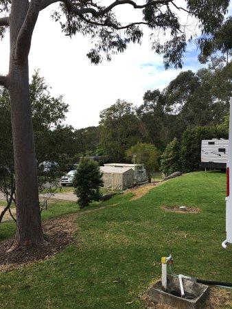 North Ryde, Australien: photo6.jpg