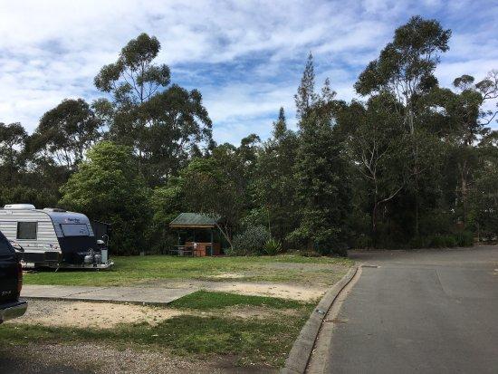 North Ryde, Australien: photo7.jpg