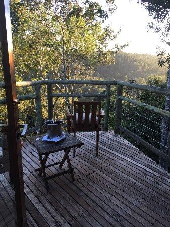Tsala Treetop Lodge: photo1.jpg
