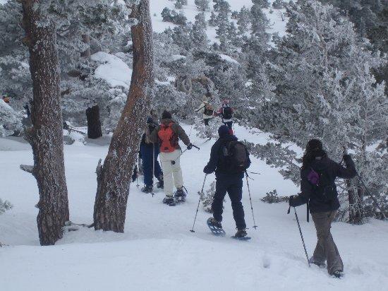 Esportec - Escola d'Esqui Prepirineu: Raquetes de Neu