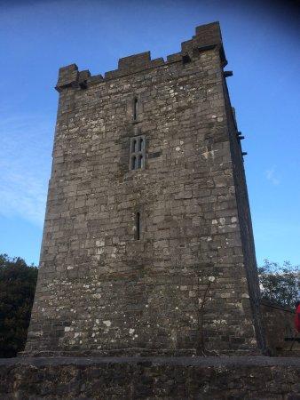 Kilshanny, Ireland: Smithstown Castle