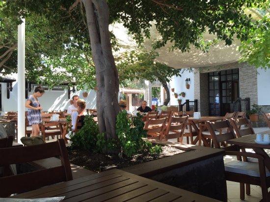 Kaktus Hotel: photo2.jpg