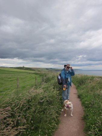 the trail to Stonehaven