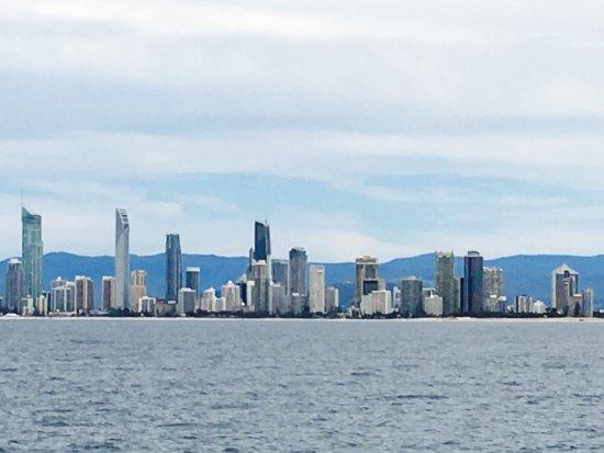 Spirit of Gold Coast Whale Watching: photo1.jpg