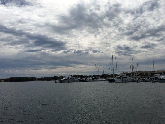 Spirit of Gold Coast Whale Watching: photo3.jpg