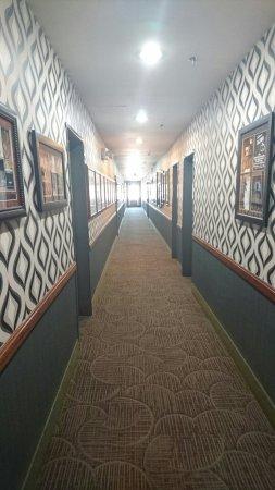 โรงแรมเบสท์เวสทินพลัส ฮอลลีวู้ดฮิลส์: DSC_0274_large.jpg