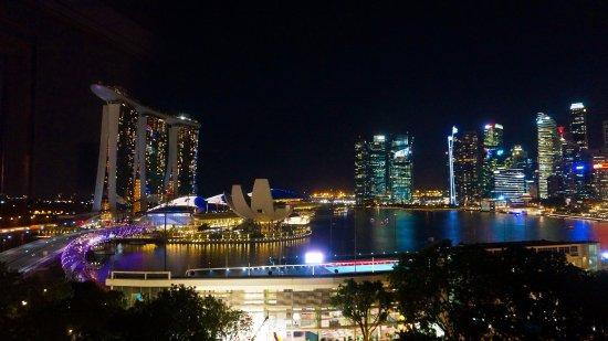 The Ritz-Carlton, Millenia Singapore: 窗外夜景。