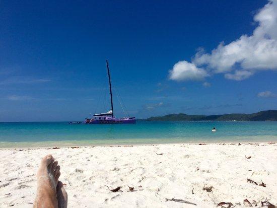 Cruise Whitsundays: photo1.jpg