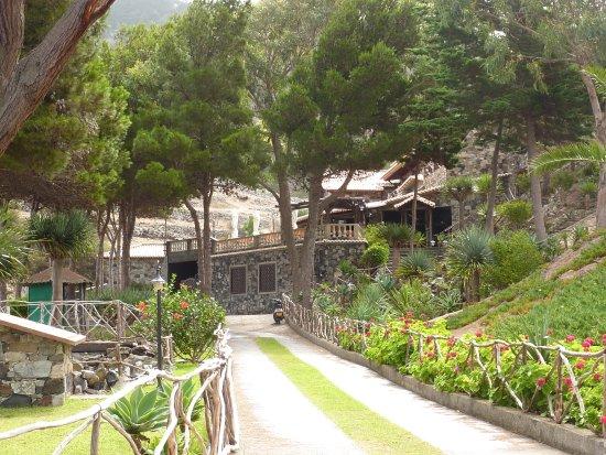 Hotel Quinta Do Serrado : Main driveway