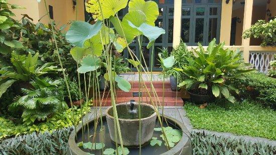 Baan Pra Nond Bed & Breakfast: nice pics!
