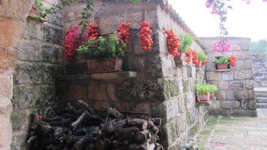 Masseria Le Stanzie: esterni