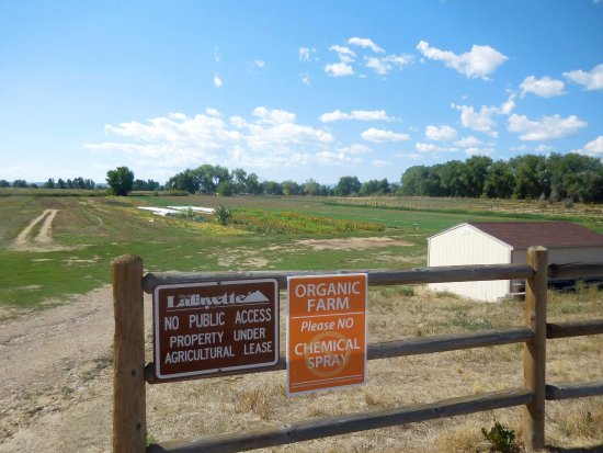 Lafayette, CO: Fields of corps next to farm store
