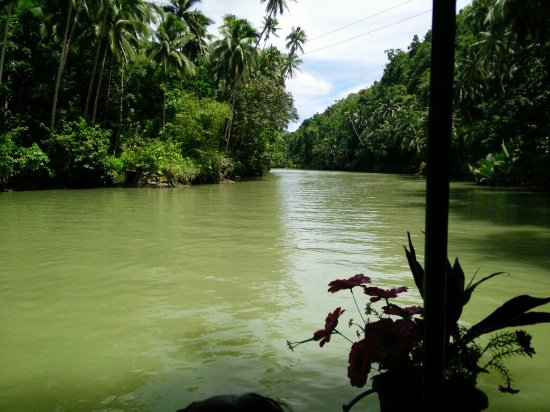 Loboc River Resort: IMG_20160911_130344_large.jpg