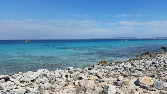 Playa de Ses Illetes: 20160616_163347_large.jpg