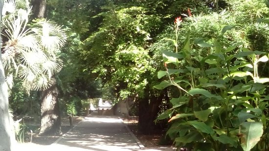 Jardin Botanico: DSC_1165_large.jpg