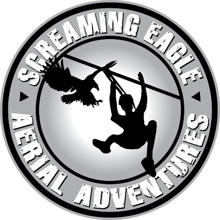 ‪‪Guntersville‬, ألاباما: Screaming Eagle Aerial Adventures‬