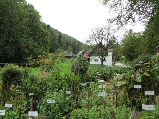 Styria, Austria: Штюбинг, музей