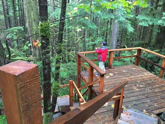 Port Renfrew, Canada: platform start for lower trail