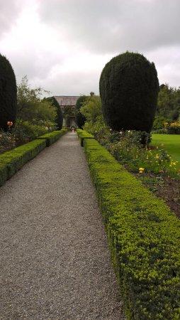 Tullow, Irlanda: borders