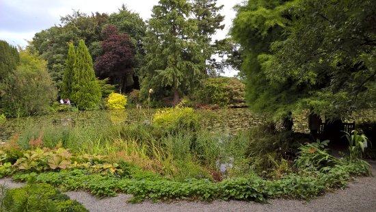 Tullow, Irlanda: pond