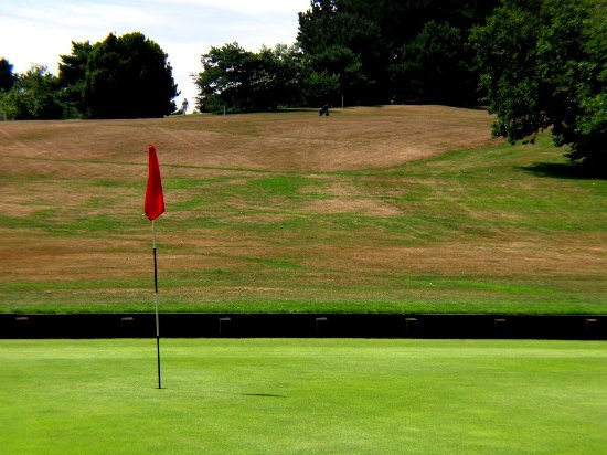 New Forest National Park Hampshire, UK: Golf in the New Forest, surrounded by stunning scenery