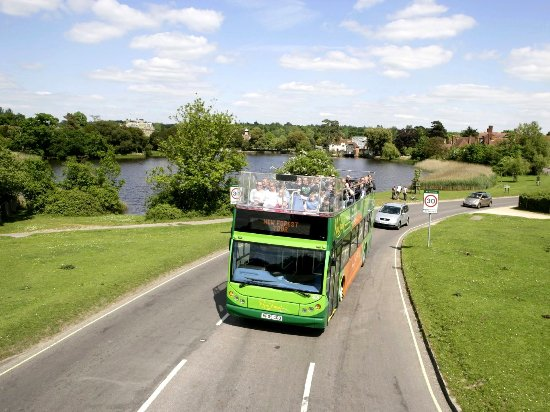 New Forest National Park Hampshire, UK: New Forest Tour