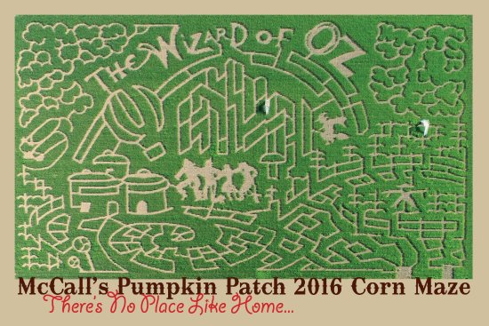 McCall's Pumpkin Patch