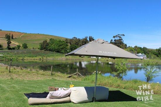 Warwick Wine Estate: Relaxing picnic spot by the lake