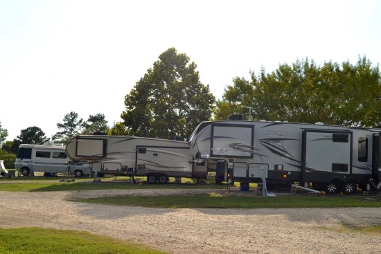 Willis, TX: A view of some of the campers in area G. Sites were level and roads are well maintained.
