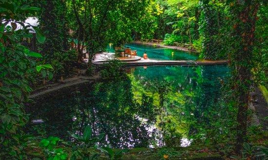 Moyogalpa, Nicaragua: El agua fresca del Ojo de Agua invita a un hidratante chapuzón.