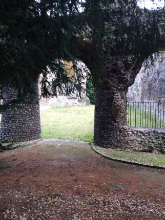 Reading Abbey Ruins: photo1.jpg