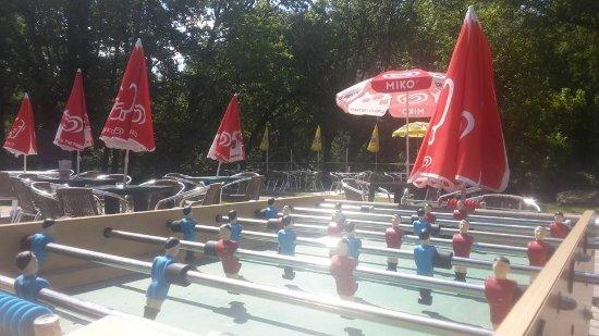 Saint-Vincent-de-Cosse, Francia: à votre disposition et aussi une table de ping pong