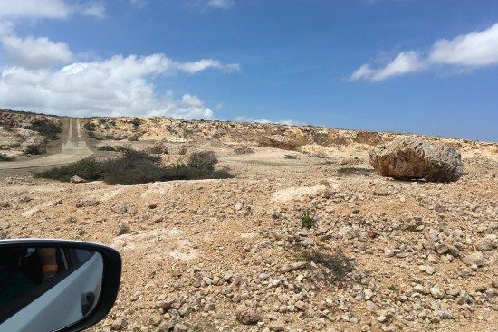 Santa Cruz, Aruba: Uitzicht in een ander deel van het park