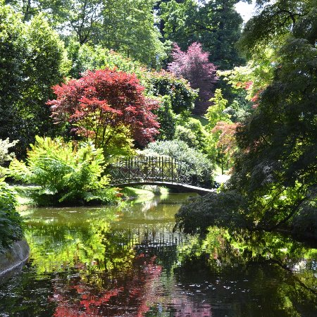 Giardini villa melzi foto di i giardini di villa melzi for Foto case giapponesi