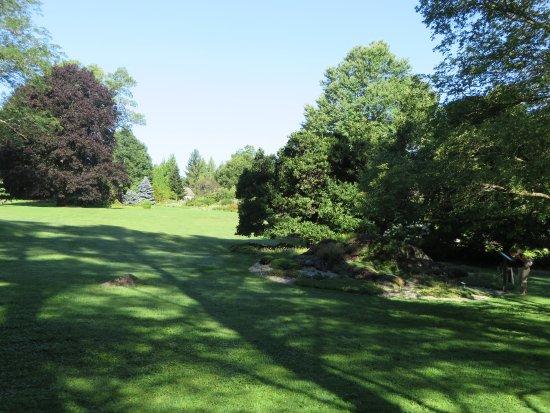 Berkshire Botanical Garden: A vista of sorts.