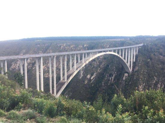 Tsitsikamma National Park, Afrique du Sud : photo0.jpg