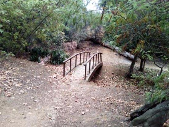 Arenys de Munt, Spanien: Puente