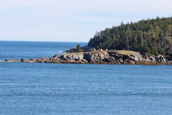 Owls Head, ME: Views from the lighthouse hike.
