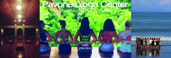 Join the Pavones Yoga Center tribe. Nature-based 200-hour Yoga Teacher Trainings in Costa Rica
