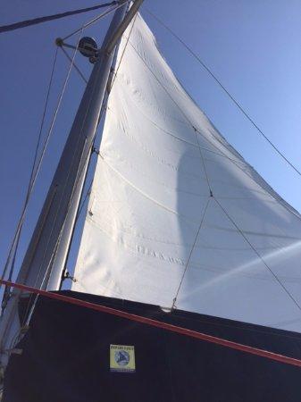 Santorini Sailing: Sails up