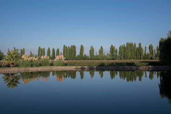 Lujan de Cuyo, Argentina: Jardines de la bodega