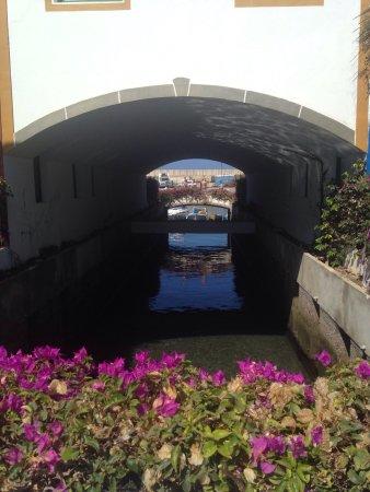 Marina Pool Bar Restaurant: photo6.jpg