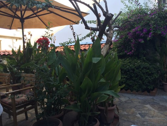 Hotel Nilya : photo5.jpg