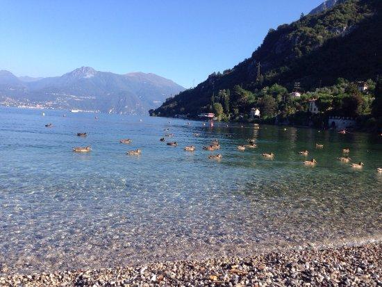 Lierna, Italy: Un paradiso!!!