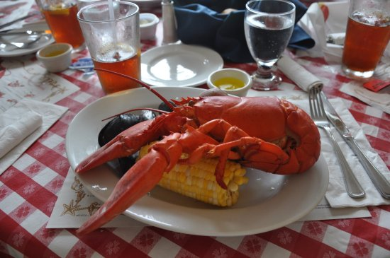 Asticou Restaurant: lobster platter with mussels, corn, and potatoes